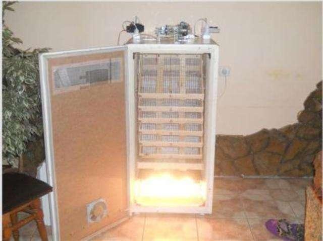 Как изготовить инкубатор своими руками из холодильника в домашних условиях