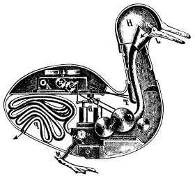 Обычно утки бройлеры к 55-60 дню жизни имеют вес около 2-2,5 кг или даже больше.