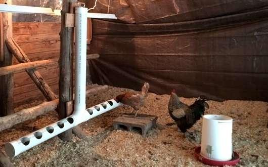 Изготовление кормушек для кур своими руками – процесс, требующий сноровки