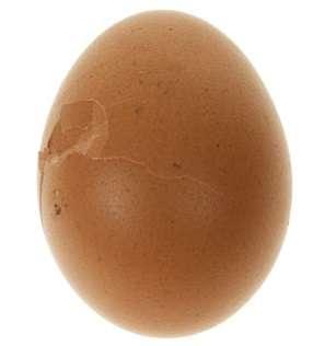 На что нужно обратить внимание при отборе яиц для инкубации?