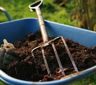 Чаще всего с этой целью используют навоз и компост.