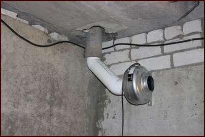 способствует сохранению в курятнике тепла зимой и поможет избежать сквозняков.