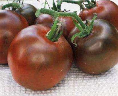 Черный принц — среднеспелое растение с бардовыми плодами, вес которых колеблется в пределах от 100 до 500 г.