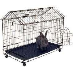 кролиководу стоит очистить клетки от помета, грязи, остатков старой подстилки