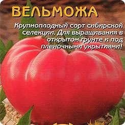 Семена с малюсенькими росточками сажайте в легкий и рыхлый грунт на глубину около 1 см.