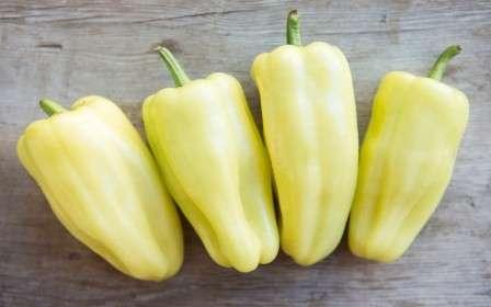 Один из лучших сортов раннего созревания, предназначенный для роста в открытом грунте. отличается высокой урожайностью.