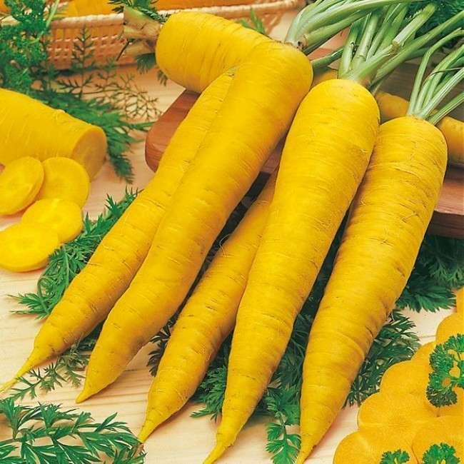 Ярко желтые плоды, вырастающие с этих семян, радуют вкусовые рецепторы даже настоящих гурманов.