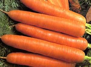 Яркая и очень полезная морковка до 20 см в длину.