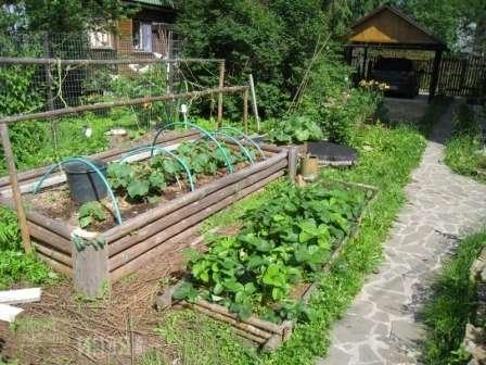 Не стоит на участке планировать размещение большого количества теплых грядок, так как на них целесообразно выращивать только теплолюбивые ранние культуры.