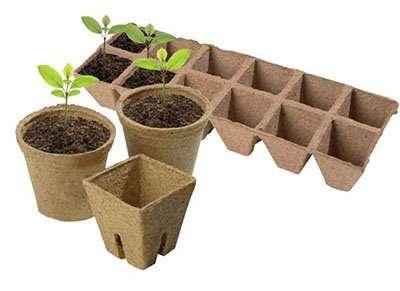 Особенно торфяные стаканчики рекомендованы для выращивания рассады культур со слабой корневой системой — огурцы, тыква, баклажаны.