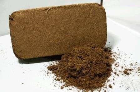 Кокосовый субстрат применяют для выращивания практически всех видов садово-огородных культур, как овощных, так и декоративных.