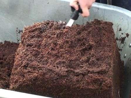 Кокосовые брикеты появились в продаже давно, поэтому садоводы-огородники уже успели оценить его преимущества.