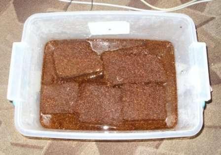 Если вы хотите использовать кокосовые волокна без добавок, налейте в подготовленную емкость воду, а затем поместите туда промытый субстрат.