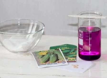 Для полной уверенности замочите семена на 20-30 минут в водном растворе:
