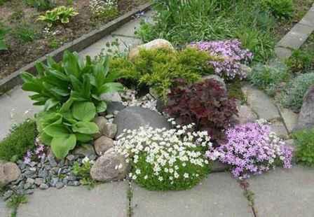 Создаем цветники и клумбы, цветущие все лето, своими руками на даче, фото