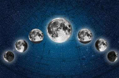 Основной принцип посадки по Луне такой: после новолуния нужно сажать растения с надземными плодами, а после полнолуния — корнеплоды.