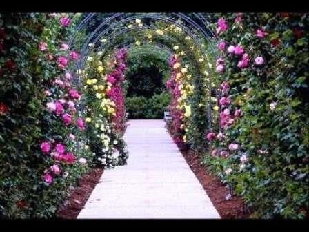 Красивая цветочная арка над дорожкой — станет изюминкой вашего сада.