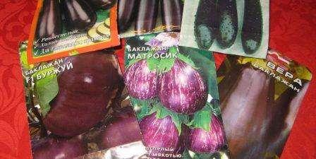 Ежегодная покупка семян баклажанов привела многих земледельцев к заключению, что стоит приобретать сразу несколько пакетиков от разных производителей.