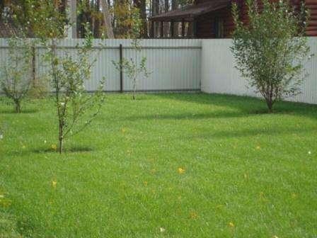 Лучше всего травяной ковер создавать на ровной поверхности.