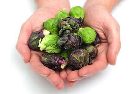 При соблюдении агротехники брюссельская капуста не будет вести себя, как капризная девчонка, даст качественный и богатый урожай.