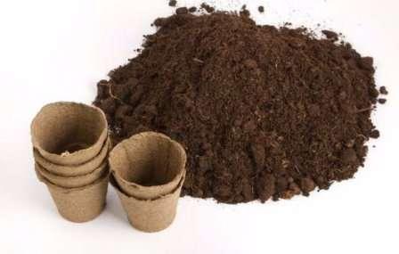 Торфяной грунт обычно раскисляют на стадии производства, но этого часто недостаточно.