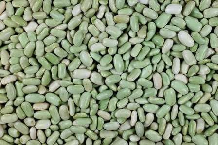 Флажоле — чаще употребляется вместе со стручками, бобы зеленые.