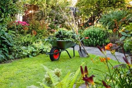 Для Подмосковья актуальной является идея создания высоких грядок для защиты овощных культур от переохлаждения.