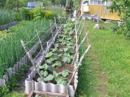 Применяется огородниками для создания высоких грядок очень часто.