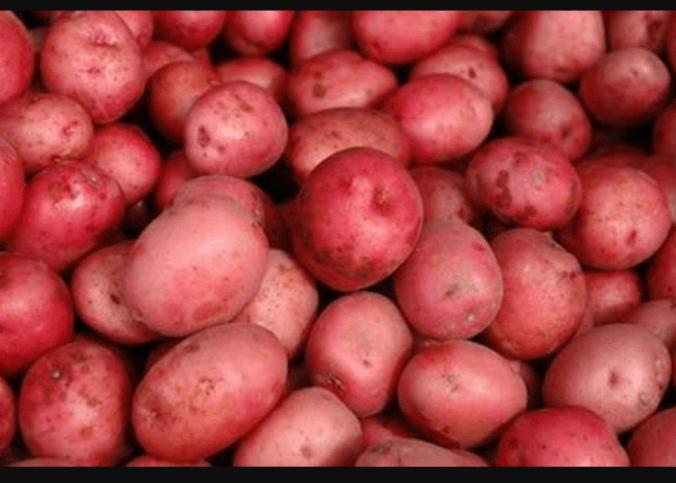 новые сорта картофеля с красной кожурой