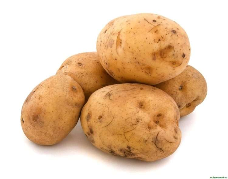 как лечить паршу на картофеле