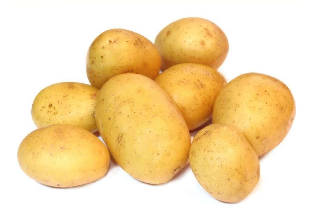 картофель семенной джелли