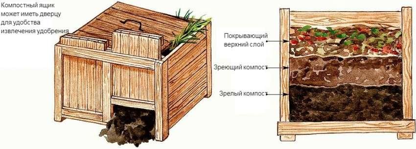 для чего нужен компост