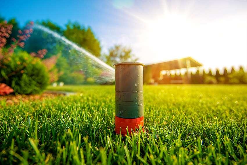 как выбрать дождеватель для полива