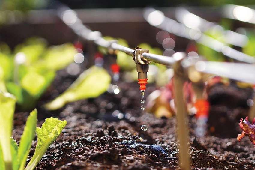 системы полива дачи огорода